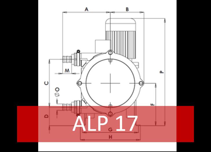 ALP17