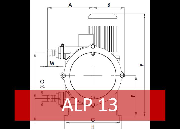 ALP 13